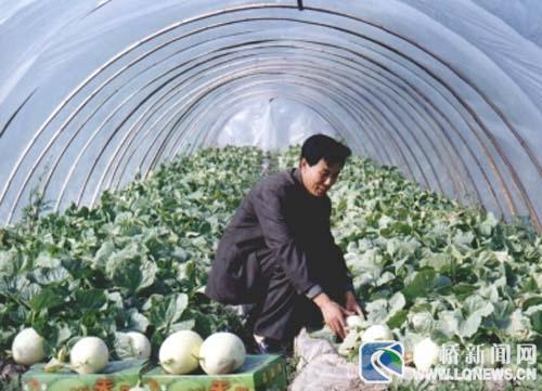 台州市路桥区灵生现代农场有限公司